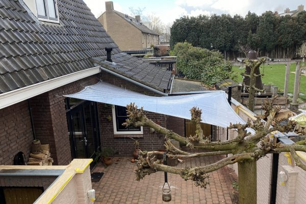 EPIC Living Garden Shelters - Koishikawa shelter 4